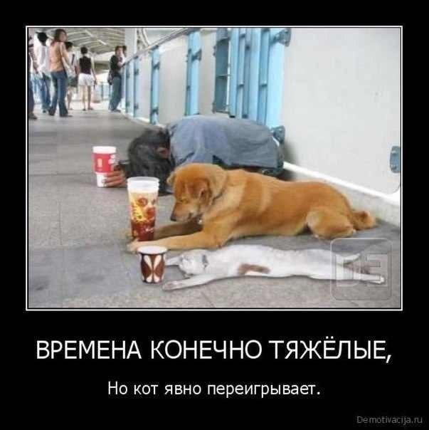 http://s1.uploads.ru/juN3H.jpg