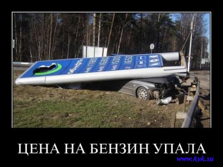 http://s1.uploads.ru/lfCUS.jpg