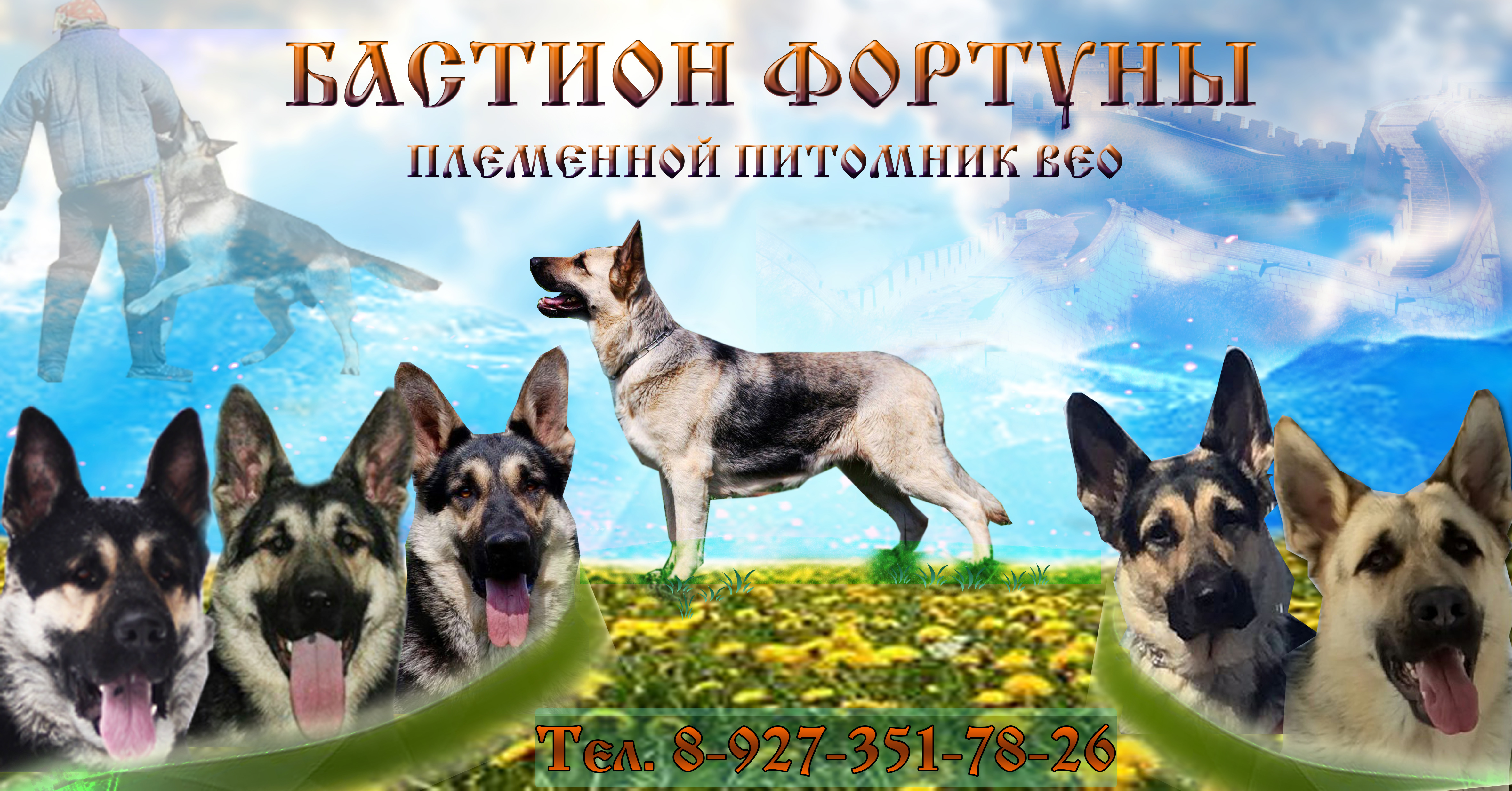 http://s1.uploads.ru/pT5yZ.jpg