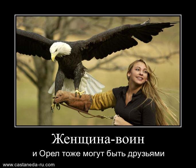 http://s1.uploads.ru/qTHw0.jpg