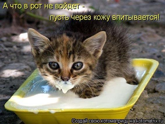 http://s1.uploads.ru/t/06gwb.jpg