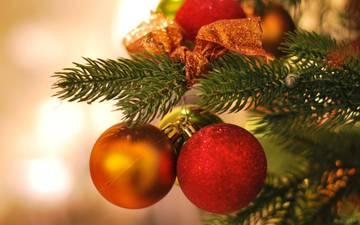 С Рождеством и Новым годом, дорогая Эдита Станиславовна!