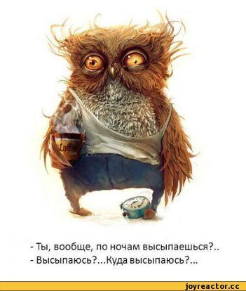 http://s1.uploads.ru/t/1AUmb.jpg