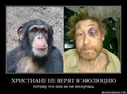 http://s1.uploads.ru/t/1OTLV.jpg