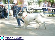 http://s1.uploads.ru/t/1ZuAs.jpg