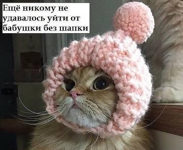 http://s1.uploads.ru/t/1q2FP.jpg