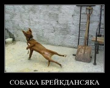 http://s1.uploads.ru/t/1sAJK.jpg