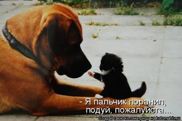 http://s1.uploads.ru/t/1sVOa.jpg