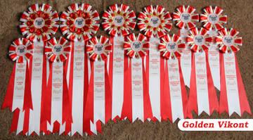 Наградные розетки на заказ от Golden Vikont - Страница 7 26Tqu