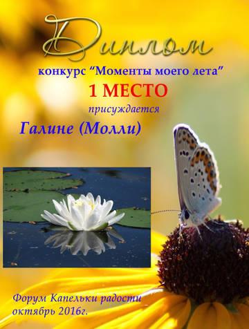 http://s1.uploads.ru/t/2kWwi.jpg