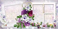 http://s1.uploads.ru/t/3Boep.jpg