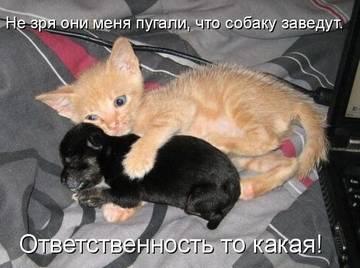 http://s1.uploads.ru/t/3weDW.jpg