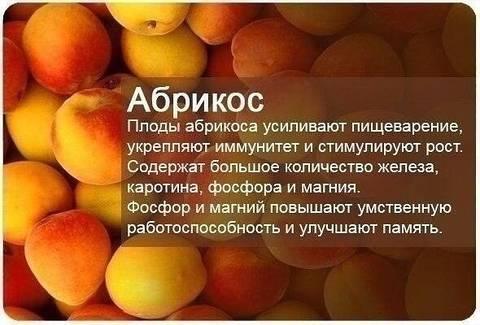 http://s1.uploads.ru/t/41YzX.jpg