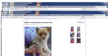 http://s1.uploads.ru/t/495Te.png