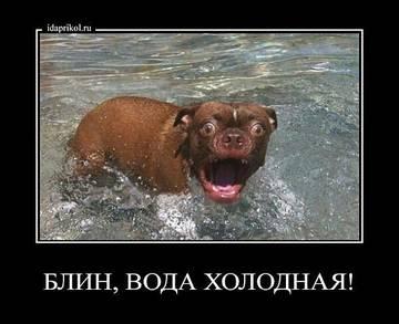 http://s1.uploads.ru/t/4d7so.jpg