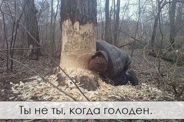 http://s1.uploads.ru/t/52Zes.jpg