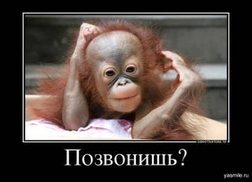 http://s1.uploads.ru/t/57gLu.jpg