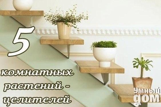 http://s1.uploads.ru/t/6PFKY.jpg