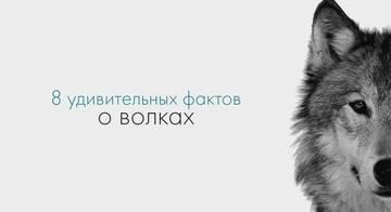 http://s1.uploads.ru/t/6WiZ7.jpg