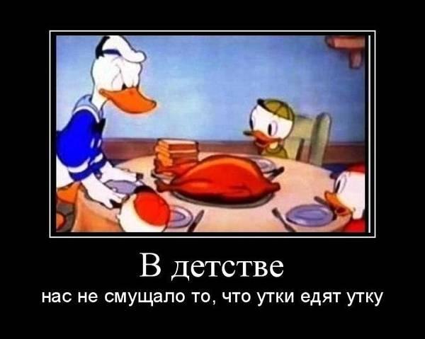 http://s1.uploads.ru/t/6vtzi.jpg