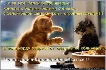 http://s1.uploads.ru/t/74CqI.jpg