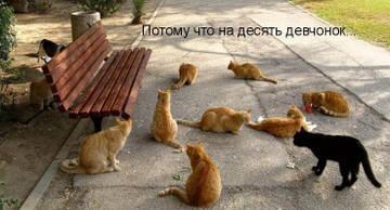 http://s1.uploads.ru/t/7Epcb.jpg