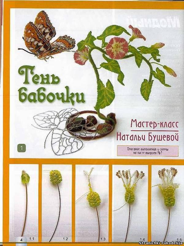 http://s1.uploads.ru/t/7Q3IA.jpg