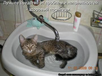 http://s1.uploads.ru/t/7Sqfb.jpg