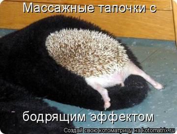 http://s1.uploads.ru/t/7exSm.jpg