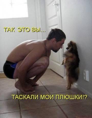 http://s1.uploads.ru/t/8R9Kc.jpg