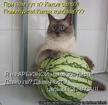 http://s1.uploads.ru/t/8XIQa.jpg