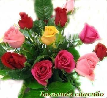 http://s1.uploads.ru/t/9HjcG.jpg
