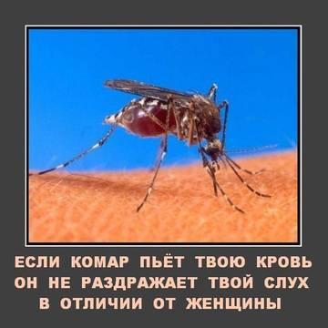 http://s1.uploads.ru/t/9NJrj.jpg