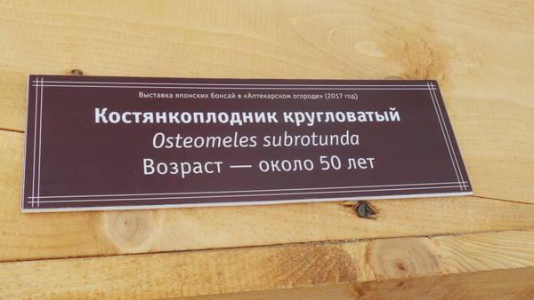 http://s1.uploads.ru/t/9S5ue.jpg