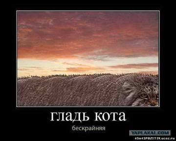 http://s1.uploads.ru/t/9WzJg.jpg