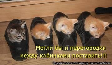 http://s1.uploads.ru/t/9amOK.jpg