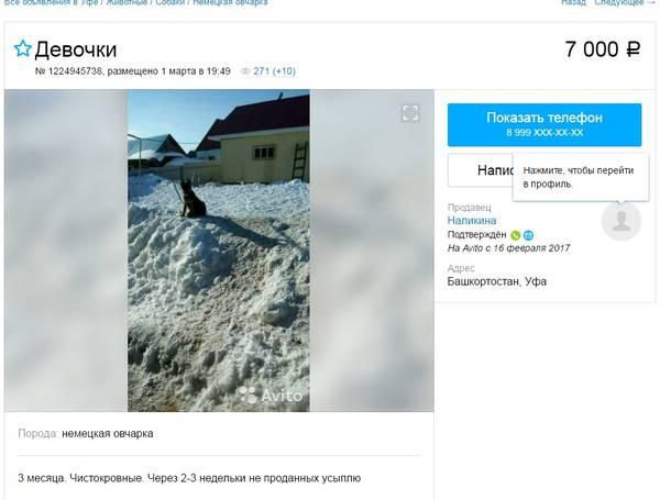 http://s1.uploads.ru/t/ACclb.jpg