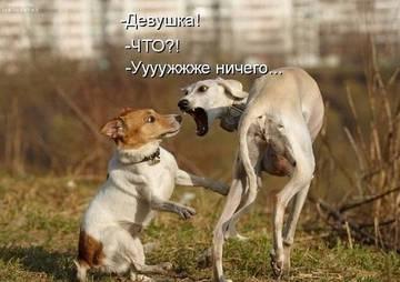 http://s1.uploads.ru/t/AkDfr.jpg