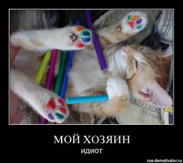 http://s1.uploads.ru/t/BN1nd.jpg
