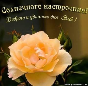 http://s1.uploads.ru/t/CSeU5.jpg