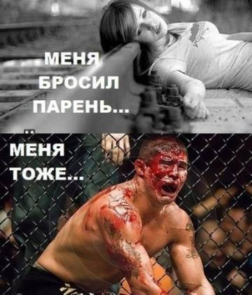 http://s1.uploads.ru/t/Ci8Pw.jpg