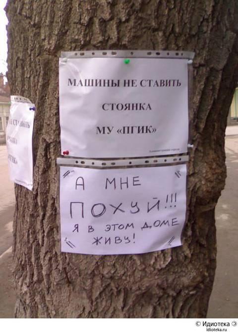 http://s1.uploads.ru/t/D5kC9.jpg