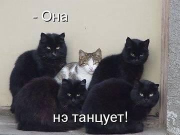 http://s1.uploads.ru/t/DNHQi.jpg