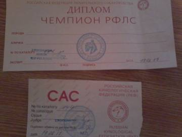 http://s1.uploads.ru/t/DOpKV.jpg