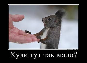 http://s1.uploads.ru/t/E2gsd.jpg