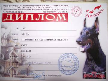 http://s1.uploads.ru/t/EH9i7.jpg