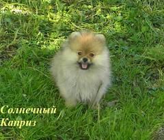 http://s1.uploads.ru/t/FLTp3.jpg