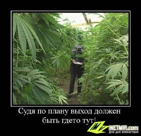 http://s1.uploads.ru/t/FU3Iq.jpg