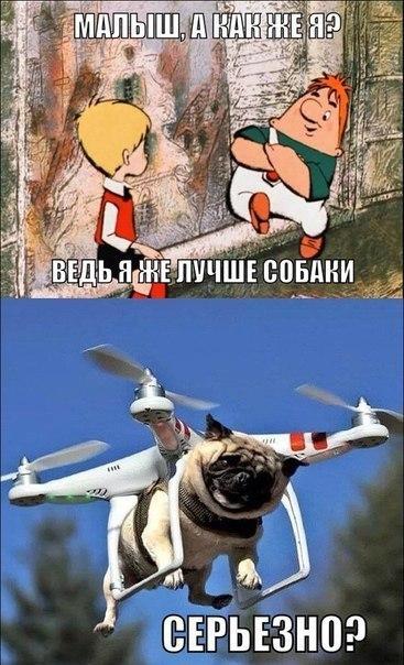 http://s1.uploads.ru/t/FYiA9.jpg