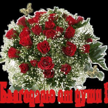 http://s1.uploads.ru/t/Fl9Zo.png